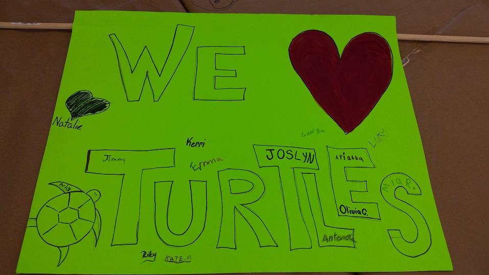 Turtles3.4